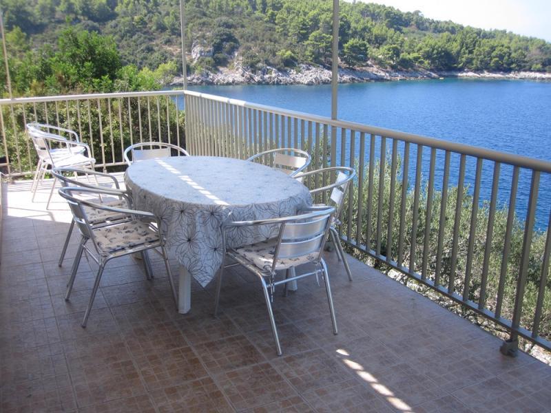 Vue de la terrasse Location Maison 43628 Prigradica