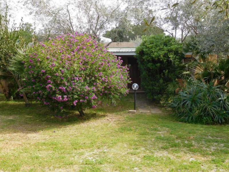 Jardin Location Appartement 45136 Alghero