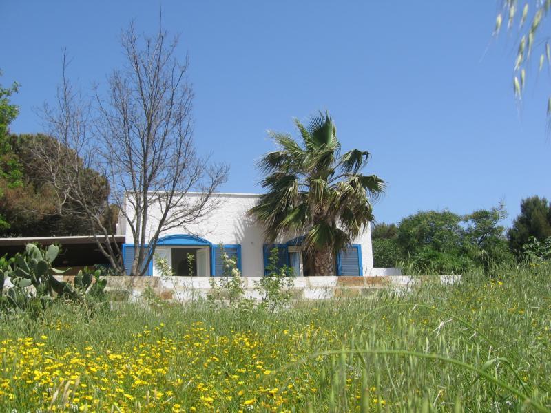 Location Maison 45348 Pescoluse