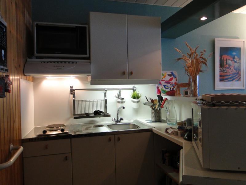 Cuisine américaine Location Appartement 49589 La Mongie