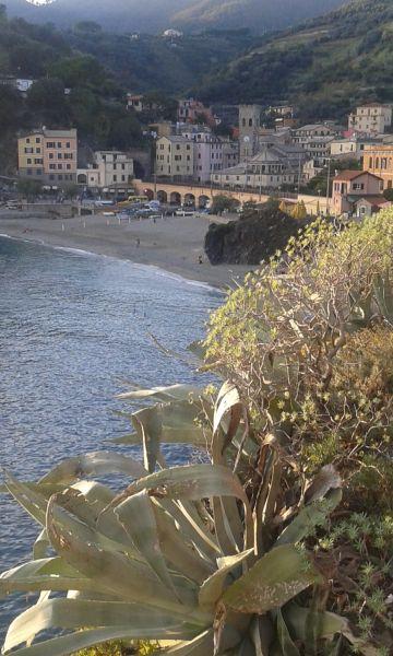 Vue autre Location Appartement 50061 Monterosso al Mare
