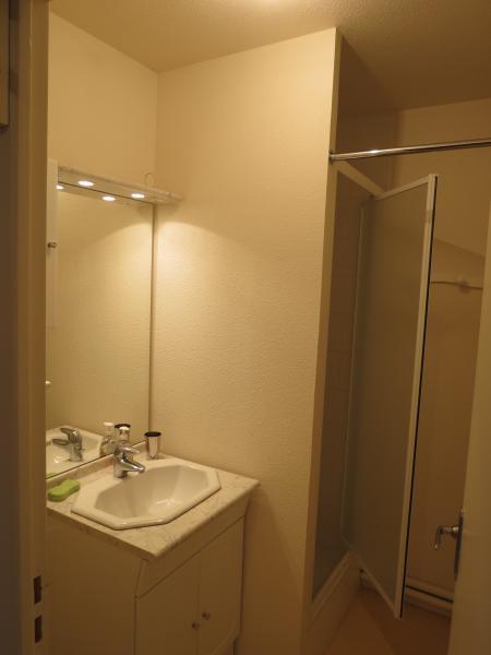 salle de bain Location Appartement 50308 Besse - Super Besse