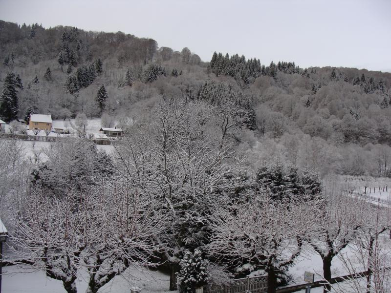Vue depuis la location Location Appartement 50842 Le Mont Dore