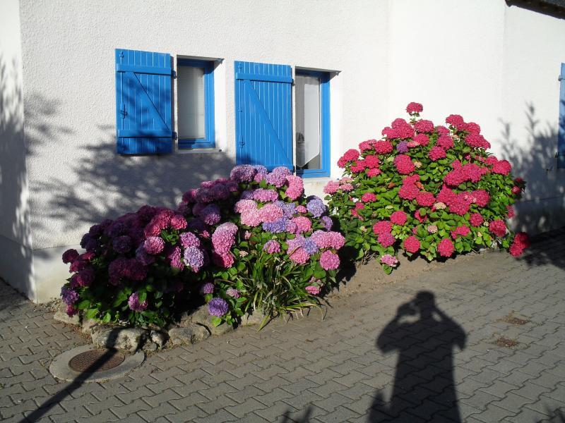 Vue extérieure de la location Location Maison 51600 Quiberon