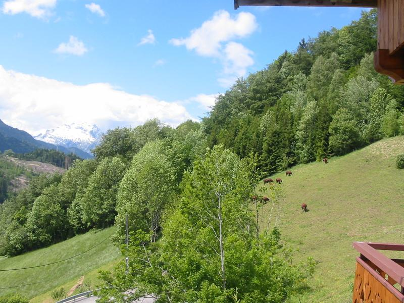 Vue de la terrasse Location Appartement 52301 Le Grand Bornand