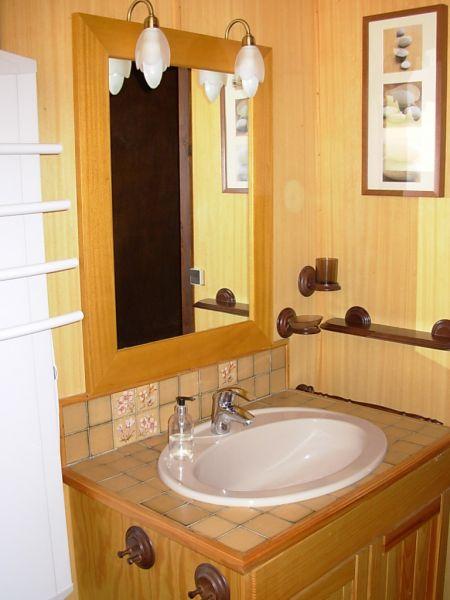 Salle d'eau Location Chalet 52709 Villard de Lans - Corrençon en Vercors
