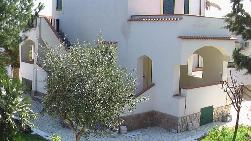 Location Appartement 53091 Vieste