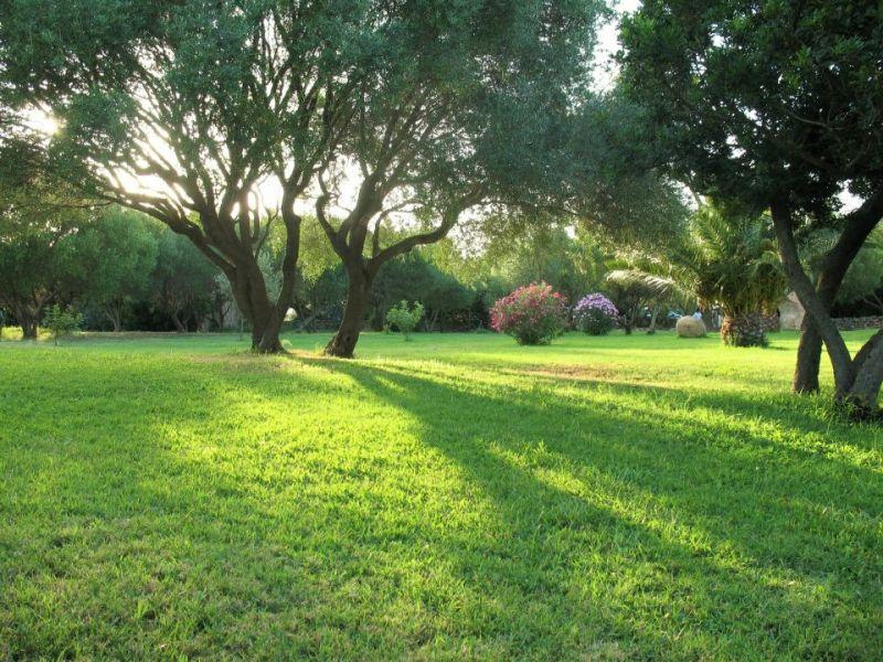 Jardin Location Appartement 53727 Porto Rotondo
