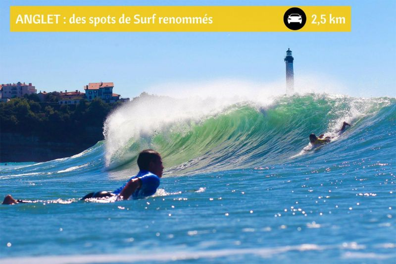 Plage Location Appartement 53932 Anglet