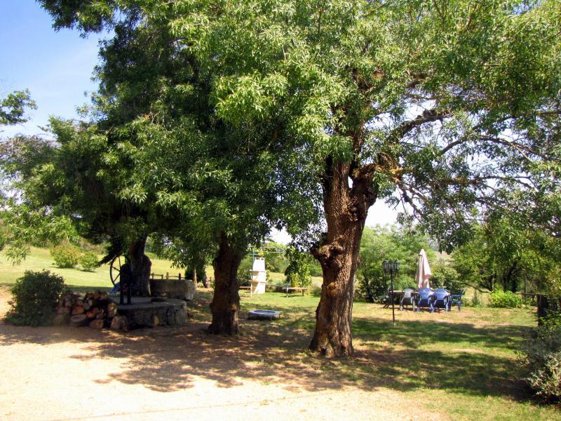 Jardin Location Gite 58227 Carcassonne