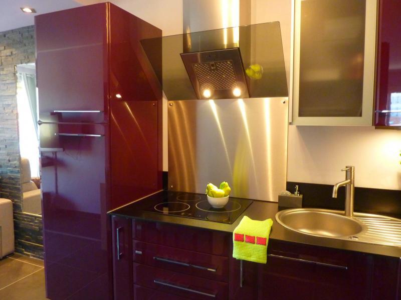 Cuisine américaine Location Appartement 58684 Cannes