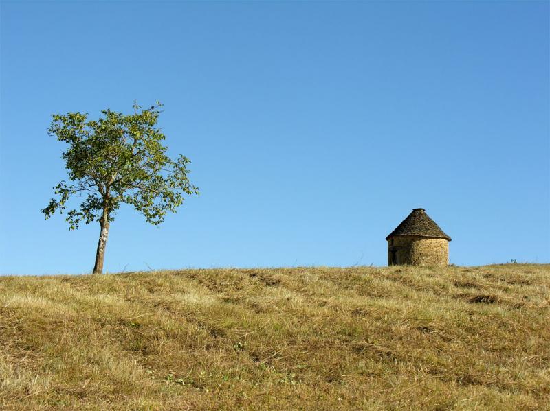 Vue depuis la location Location Maison 59161 Sarlat