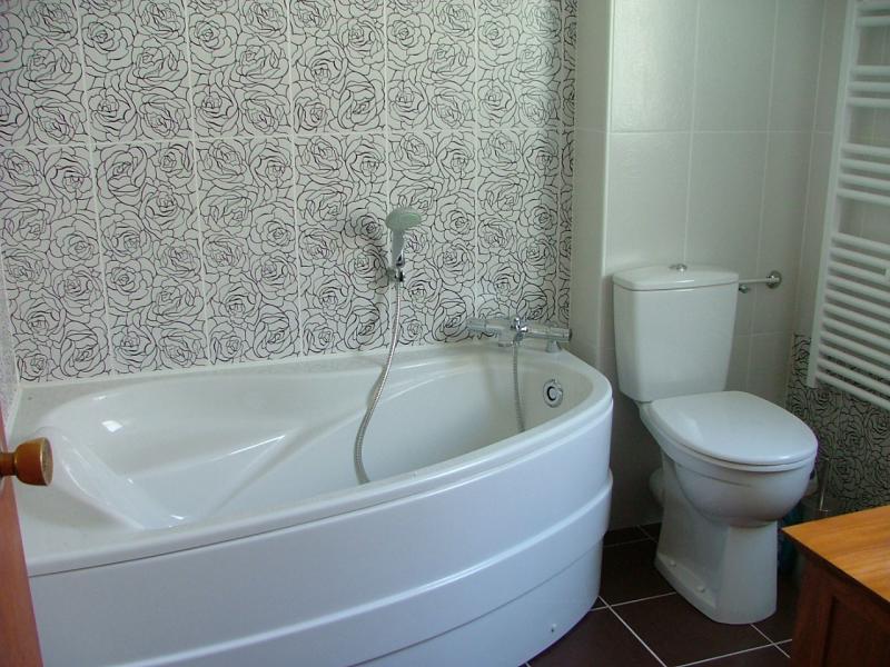salle de bain Location Appartement 60237 Audierne