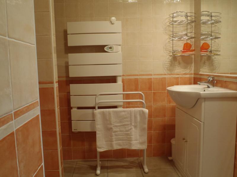 Salle d'eau Location Appartement 60623 Abriès