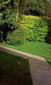 Jardin Location Maison 61332 Sainte-Suzanne