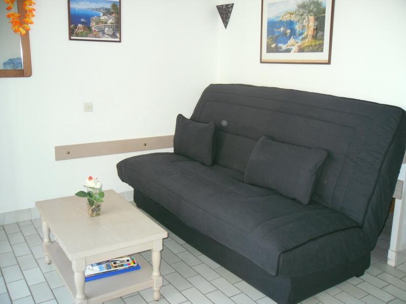 Location Studio 6233 Cap d'Agde