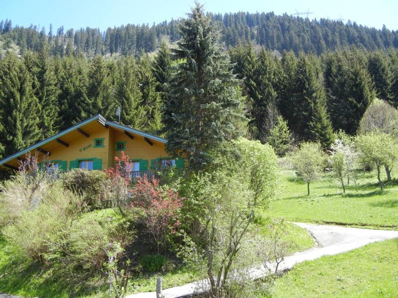 Vue extérieure de la location Location Chalet 799 Châtel
