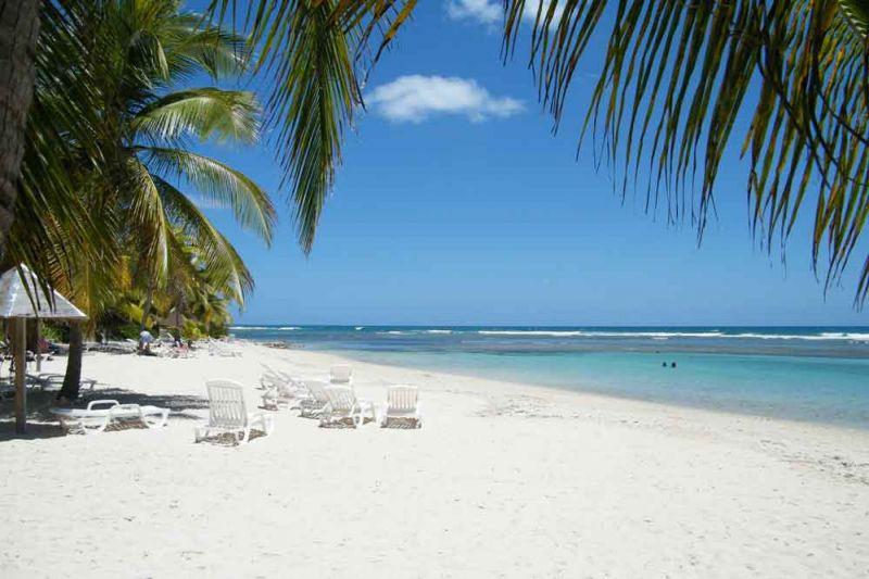 Plage Location Bungalow 8023 Sainte Anne (Guadeloupe)