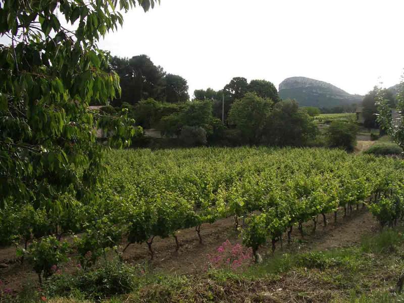Vue à proximité Location Villa 8409 Cassis