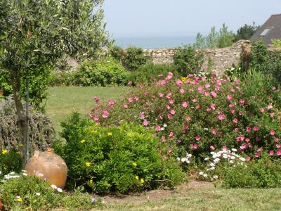 Vue depuis la location Location Maison 8770 Quiberon