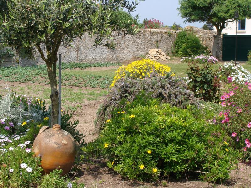 Jardin Location Maison 8770 Quiberon