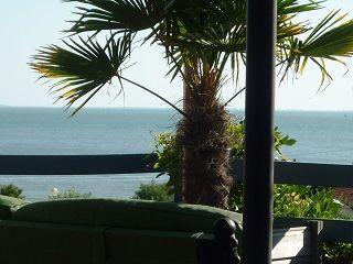 Vue depuis la location Location Villa 9477 Pornic