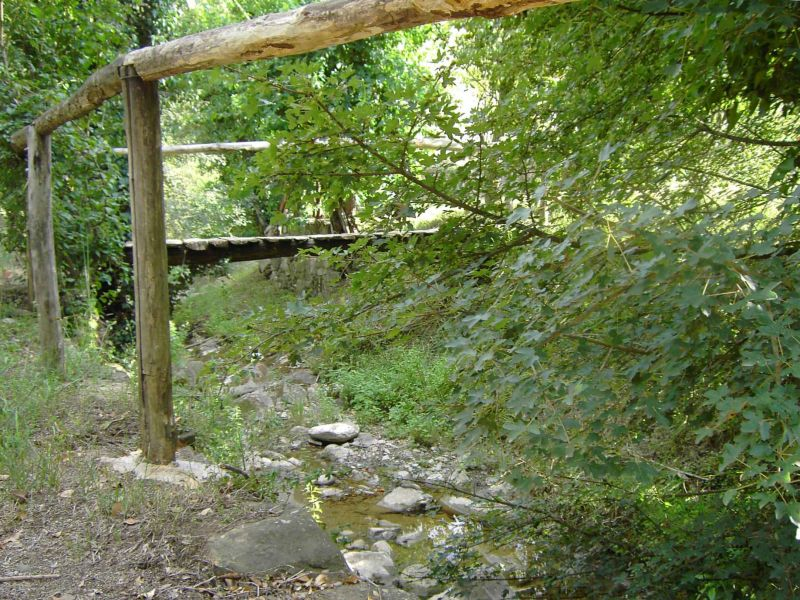 Jardin Location Maison 106425 Arezzo