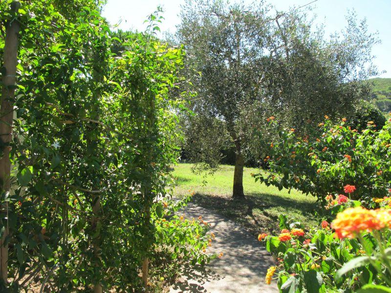 Jardin Location Appartement 114747 Capoliveri