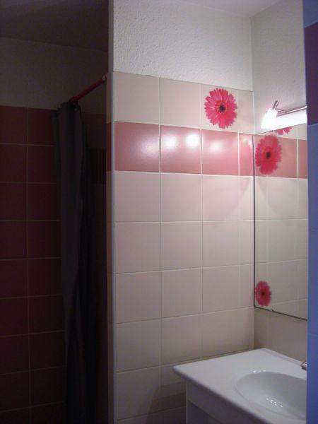 Salle d'eau Location Appartement 67502 Briançon