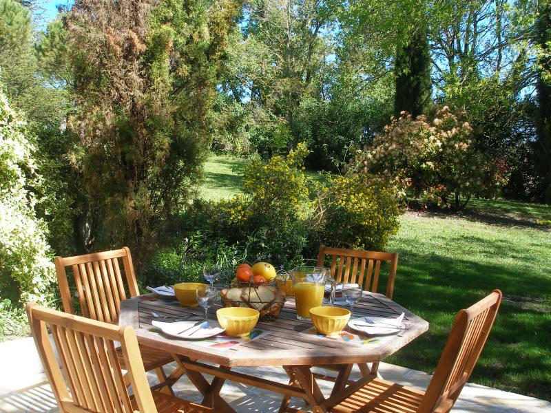 Terrasse Location Gite 84754 Carcassonne