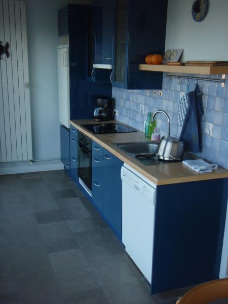 Cuisine américaine Location Appartement 96150 Le Touquet