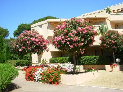 Location Appartement 107732 Saint Raphael