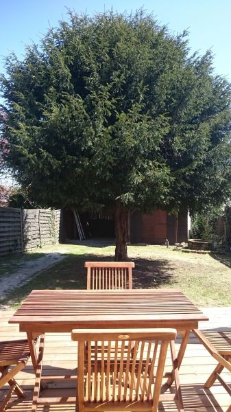 Jardin Location Gite 108872 Andernos les Bains