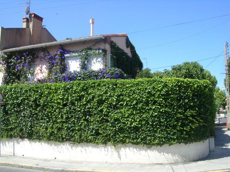 Vue extérieure de la location Location Maison 111870 Perpignan