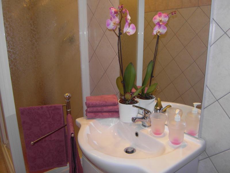 salle de bain Location Appartement 69902 Rome