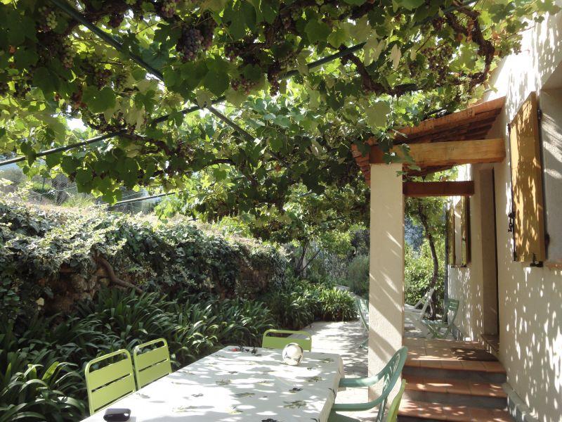 Jardin Location Villa 92568 Cannes