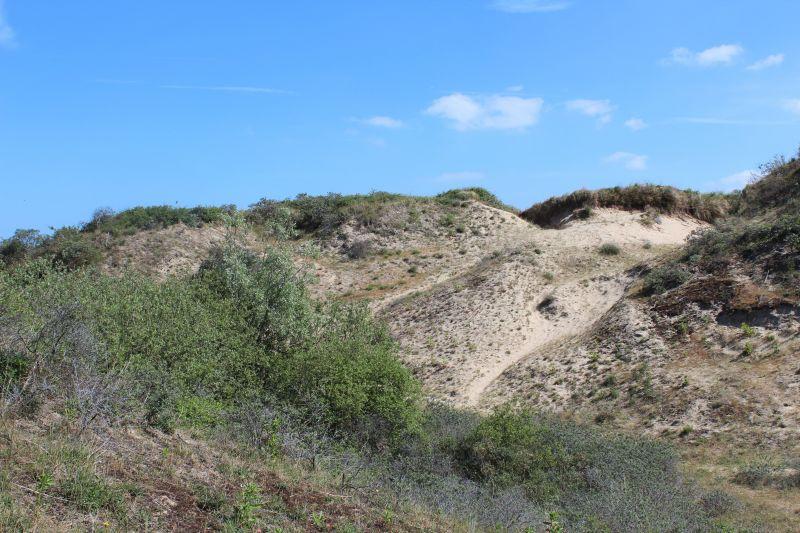Vue à proximité Location Appartement 112194 Bray-Dunes