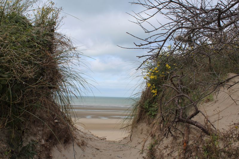 Plage Location Appartement 112194 Bray-Dunes