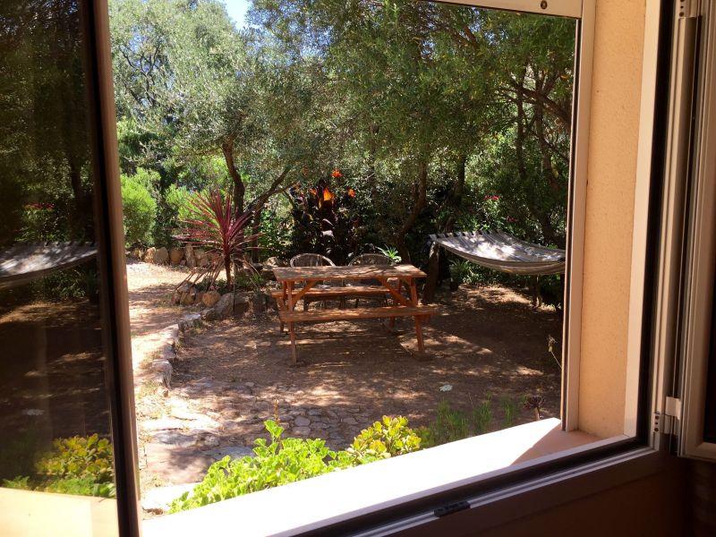 Vue depuis la location Location Appartement 116139 Porto Pollo