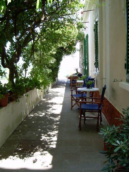 Jardin Location Chambre d'hôte 116473 Capoliveri