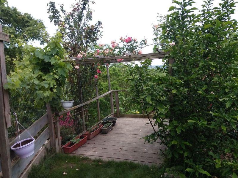 Jardin Location Maison 118183 Bidache