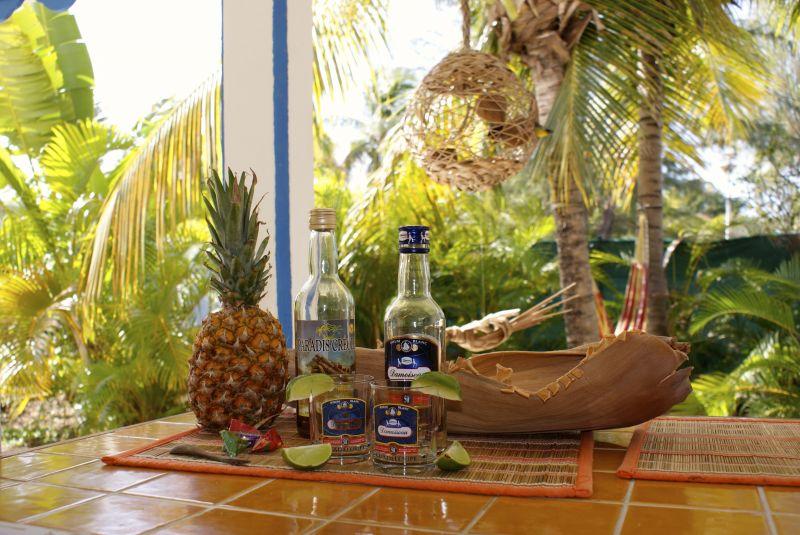 Cuisine d'été Location Villa 65357 Saint Francois