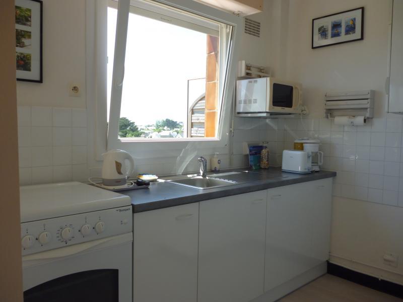 Cuisine américaine Location Appartement 77505 Quiberon
