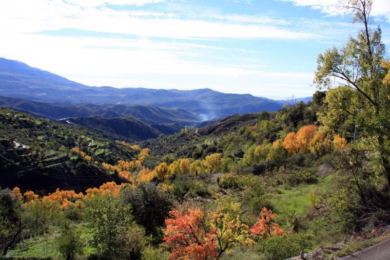 Vue de la terrasse Location Gite 83882 Laroles