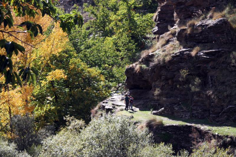 Vue à proximité Location Gite 83882 Laroles