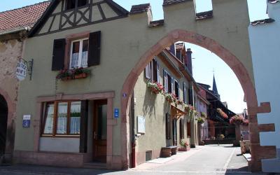 Location Gite 96322 Riquewihr