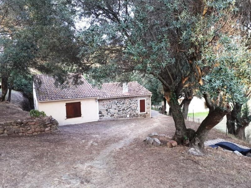 Location Maison 116438 Propriano