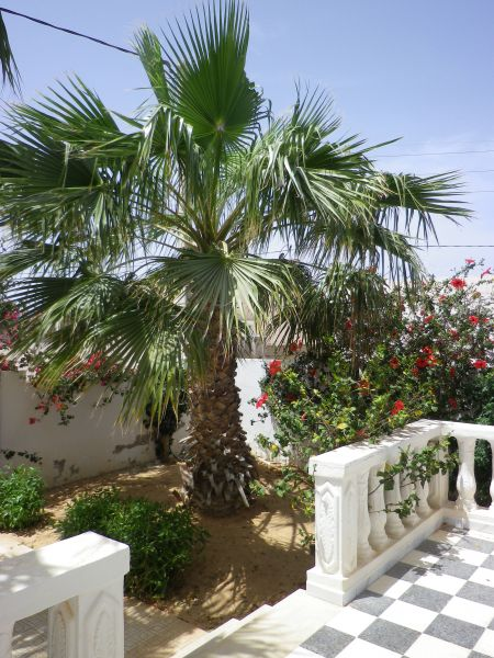 Jardin Location Maison 68407 Djerba