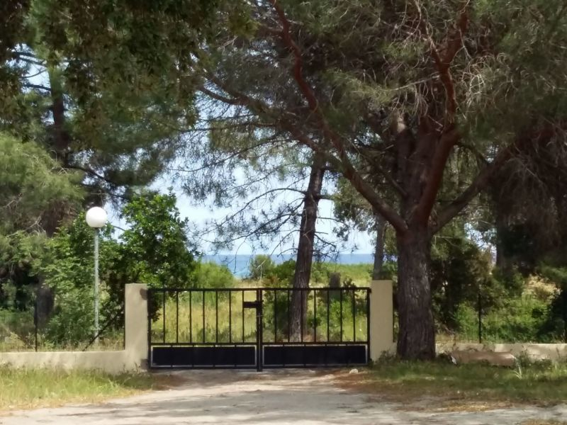 Vue depuis la location Location Studio 105252 Porto Vecchio