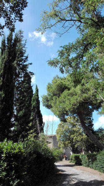 Vue à proximité Location Gite 107439 Carcassonne